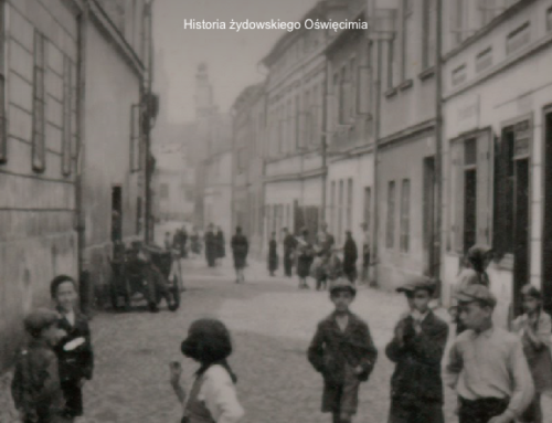 Wystawa Oszpicin w Google Cultural Institute